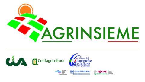 """""""Più forte è l'agricoltura, migliore è la Sicilia""""! Sabato 19 marzo inziativa organizzata da Agrinsieme presso """"Le Ciminiere"""" di Catania"""