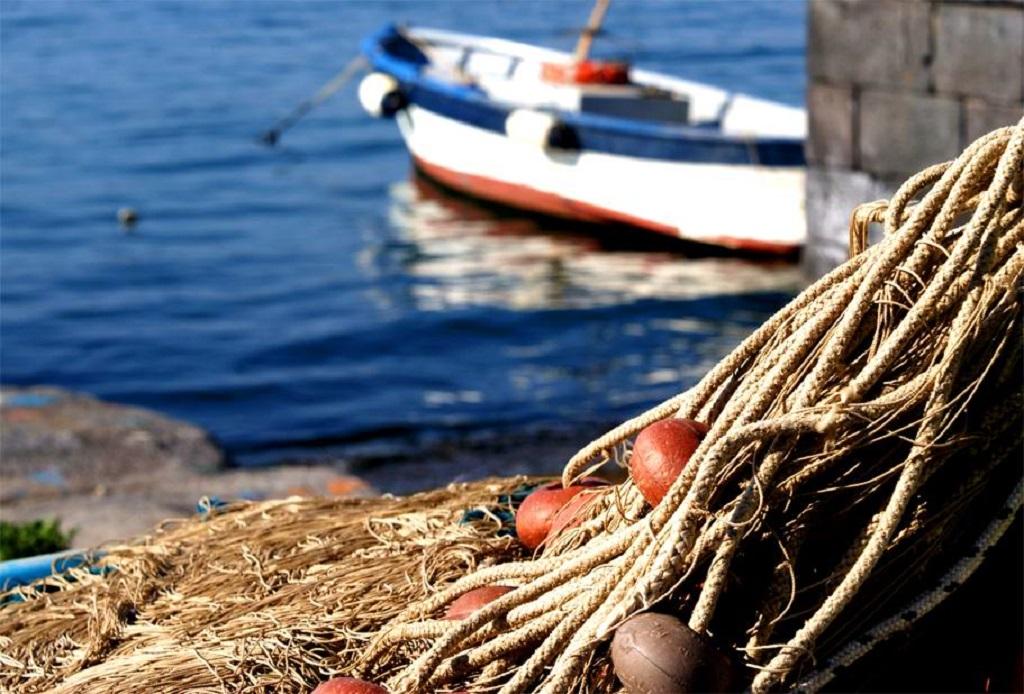 Il contributo della trasformazione per la valorizzazione della filiera ittica